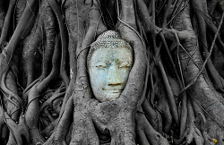 Ayutthaya culture is dated back half a century and more